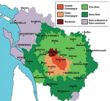 Koňaková oblast